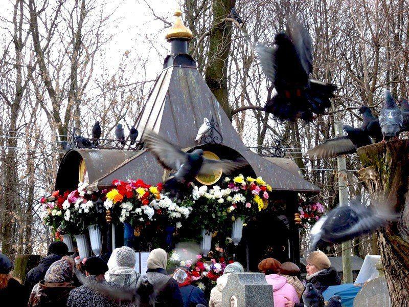 """""""Молилася, плакала і щось шепотіла"""": Маму Заворотнюк помітили на кладовищі. Шанувальники в шоці!"""