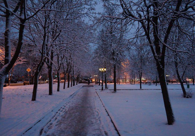 Синоптики попереджають! Погіршення погоди вже цих вихідних: все наближається до зими