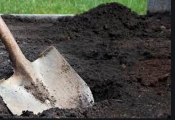 """""""Почав копати яму і почув дитячий плач"""": Чоловік викопав із землі немовля. Заживо поховали батьки"""