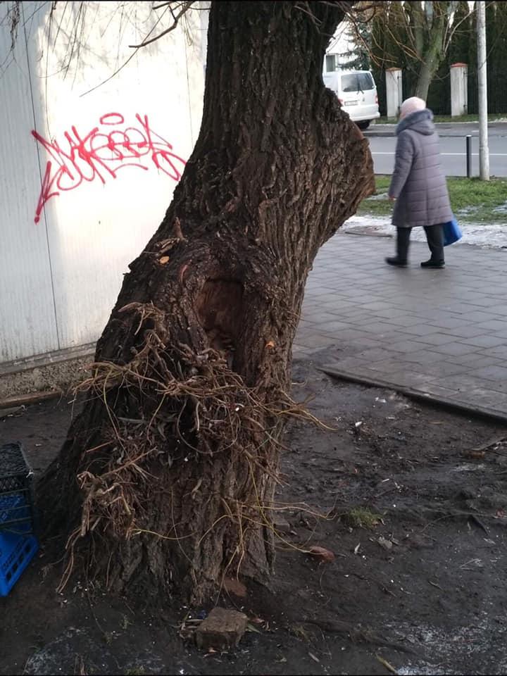 """""""Почекати, поки на голову впаде…"""": на вулиці Петлюри страшно пересуватись. Люди просять про допомогу! – #СадовийВідремонтуйЛьвів"""