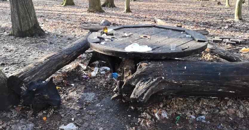"""Побиті пляшки, вирвані дерева і """"алкоголь рікою"""". У що перетворився парк і як це терпіти? – #СадовийВідремонтуйЛьвів"""