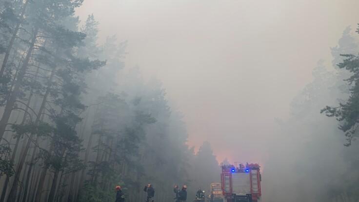 Після масштабних пожеж. Влада Луганщини заявила про нову проблему: працює декілька загонів рятувальників